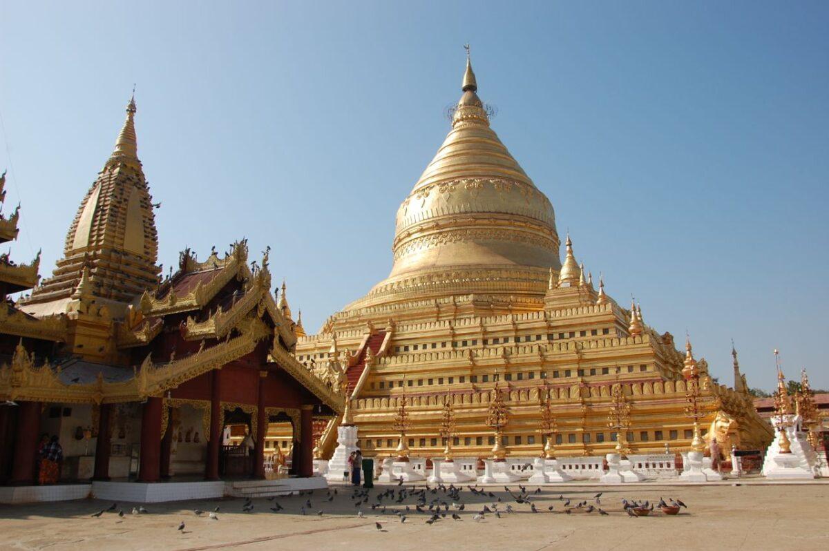 Reise in Myanmar in Asien. Die goldene Shwezigon Pagode in der Tempelstadt Bagan glänzt im Sonnenlicht, während sich auf einem Vorplatz zahlreiche Tauben tummeln.