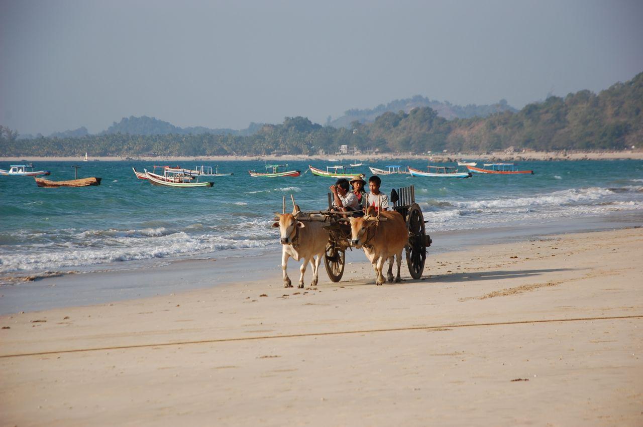 Reise in Myanmar in Asien. Eine Gruppe burmesischer Einheimischen fährt auf ihrem Ochsenkarren dem Strand von Ngapali entlang, im Hintergrund schaukeln bunte Fischerboote auf den Wellen.