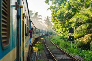 Zug mitten in der Natur in Sri Lanka mit Palmen und einem Mensch, der aus dem Zug blickt