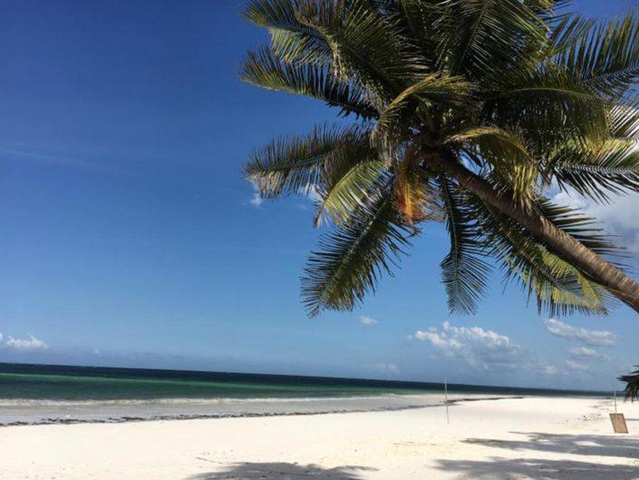 Sansibar – ein Traum aus 1001 Nacht