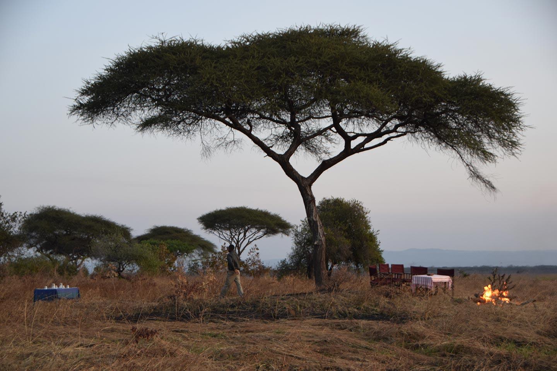Reise in Tansania in Afrika. Mitten in der Savanne unter einem Baum stehen einige Klappstühle um einen Esstisch und ein Lagerfeuer brennt daneben.