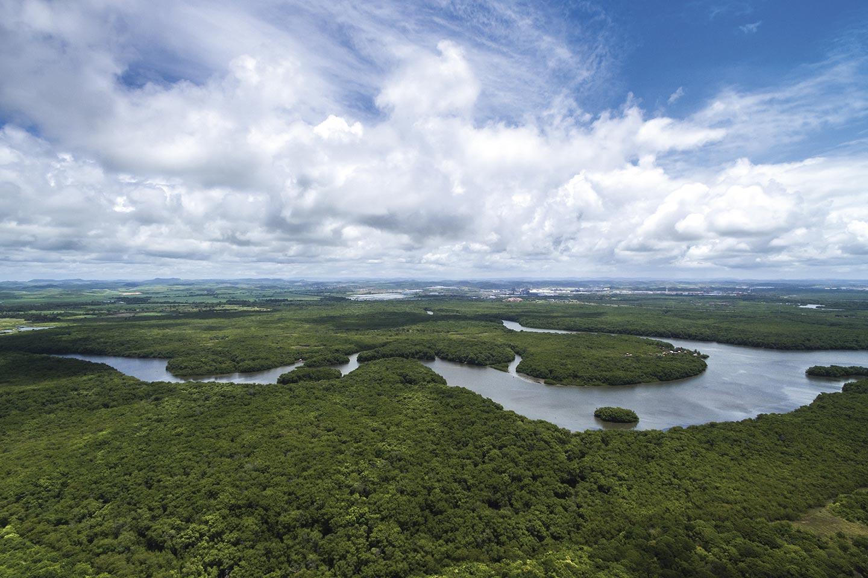 Reise in Brasilien in Südamerika. Aus einem Flugzeug Sicht auf den Amazonas Fluss und üppigen Wald.