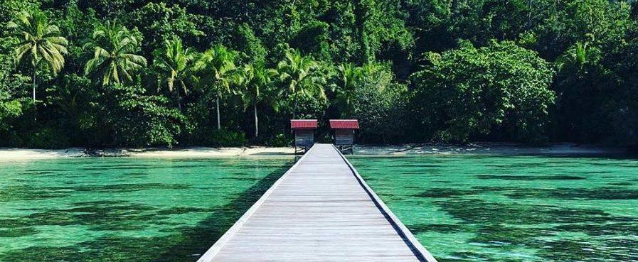 Reise in Raja Ampat in Indonesien. Ein langer Holzsteg führt über türkisfarbenes Meer bis zu einer Insel mit Strand, Palmen und üppiger Natur.