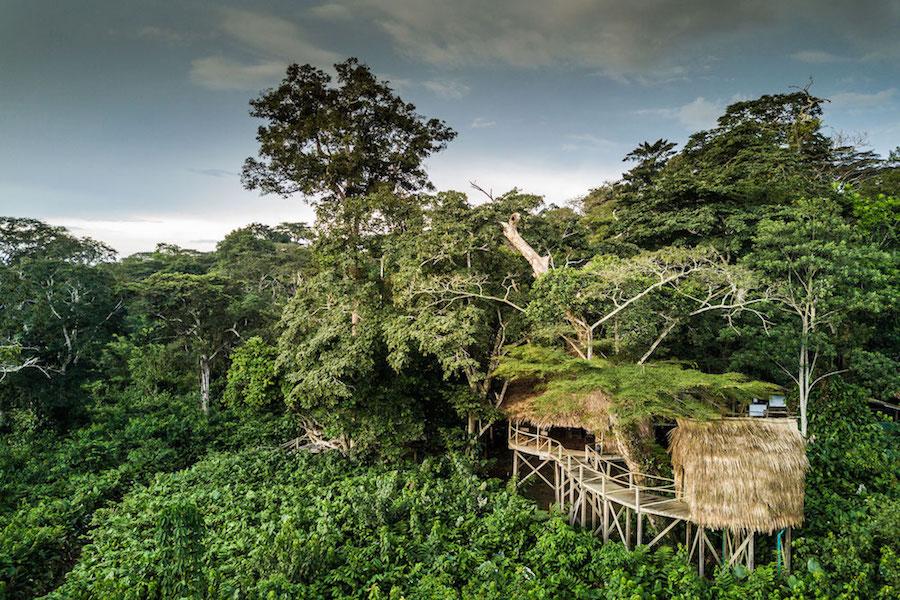 Reise im Kongo in Afrika. Reisebild auf einen Bungalow des Odzala Kokoua Camp im Urwald des Nationalparks.