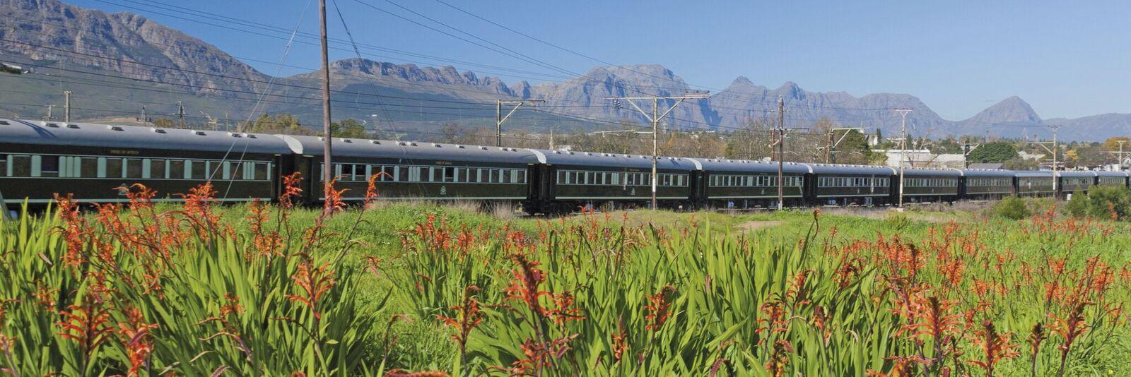 Zugreise mit Rovos Rail in Afrika. Der Zug fährt durch üppige Felder, während im Hintergrund die Berge emporragen.