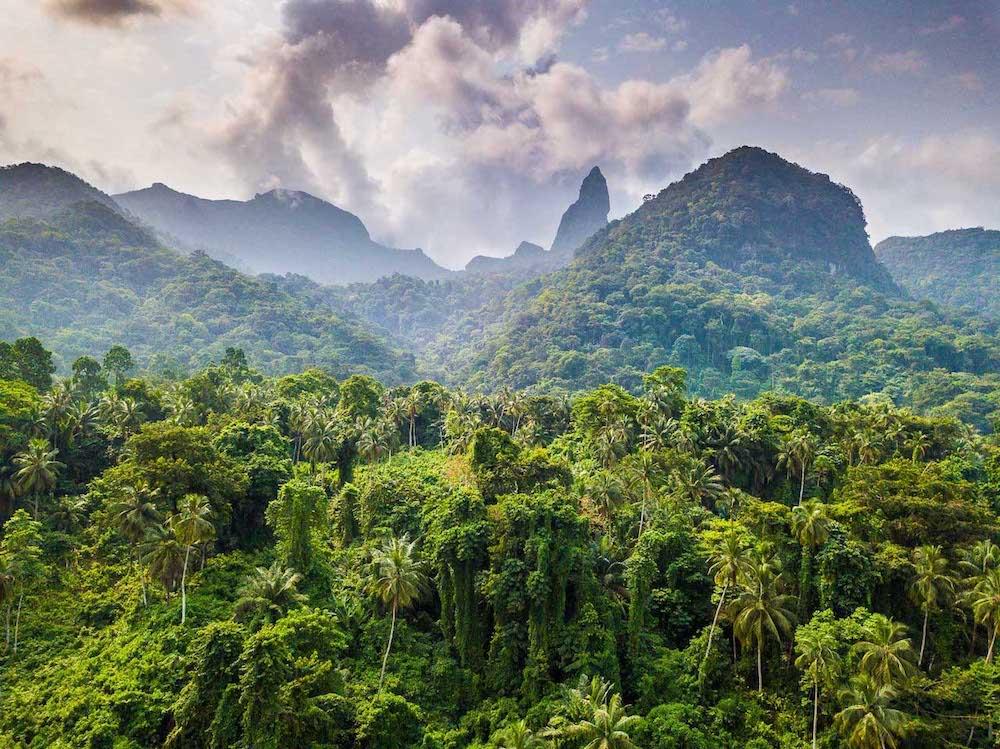 Reise in Sao Tome und Principe in Afrika. Landschaftsbild vom dichten Dschungel auf Principe Island, wobei die Basaltnadel Pico de Papagaio in den Himmel aufragt.