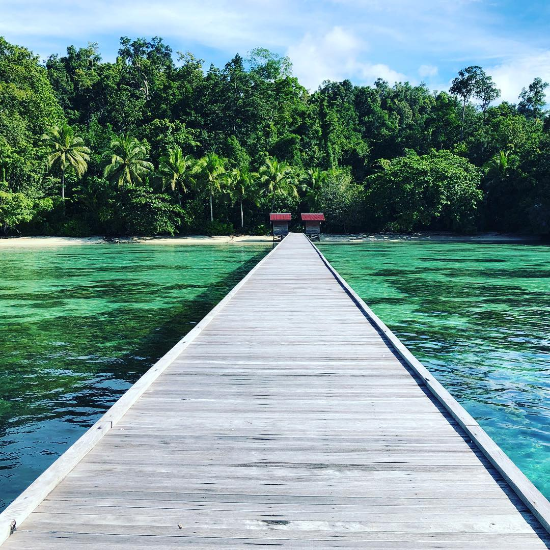Reise in Raja Ampat in Indonesien. Ein langer Holzsteg führt über türkisfarbenes, seichtes Meer bis ans Ufer, welches mit hohen Palmen und Urwald gesäumt ist.