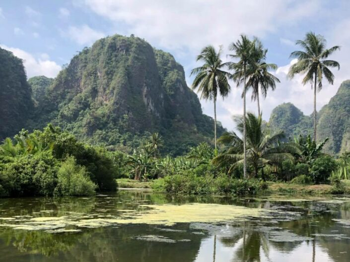 Sulawesi – Totenkult und Felsengräber