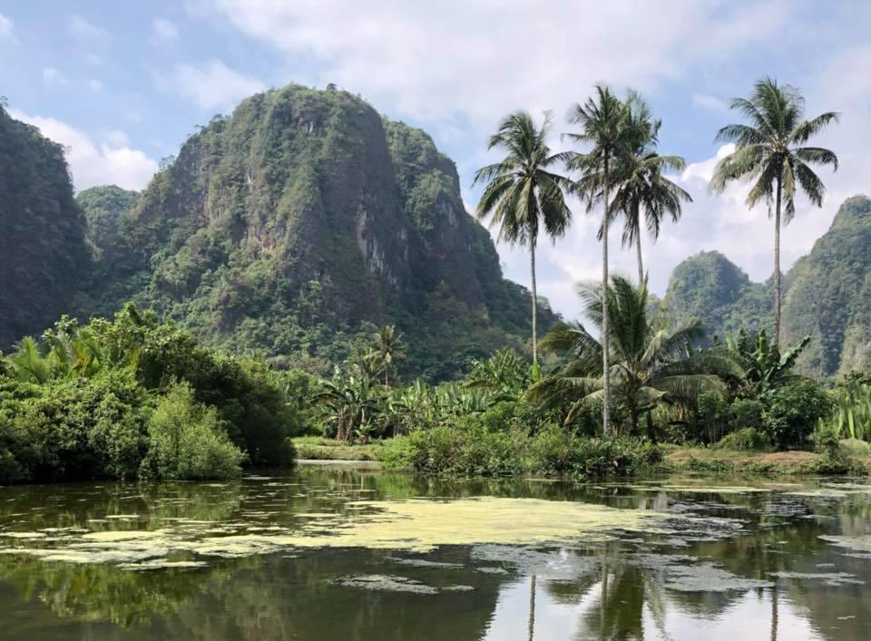 Reise in Sulawesi in Indonesien. Von der Eco Lodge Rammang Rammang aus hat man einen schönen Blick auf einen See, auf einer kleinen Insel ragen Palmen auf, im Hintergrund ragen üppig bewachsene Berge auf.