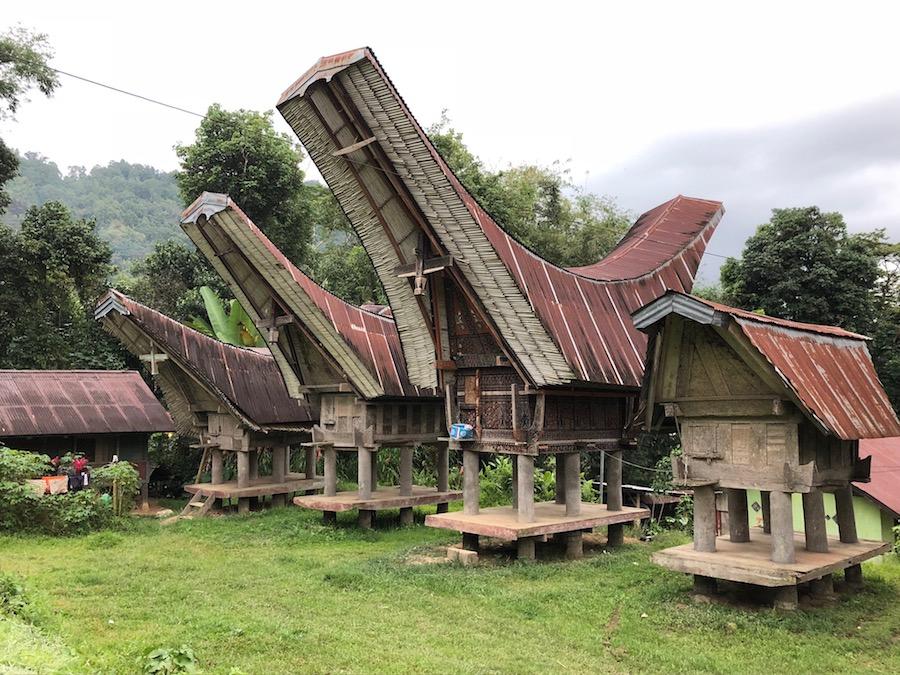 Reise in Sulawesi in Indonesien. Vier traditionelle Stelzenhäusern stehen mit gebogenem Dach auf einer Lichtung, umbeben von üppiger Natur.