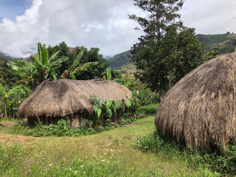 Reise in West Papua in Indonesien. Die Dächer der traditionellen Hütten bestehen aus Stroh, die Häuser werden von kleinen Gärten umgeben.