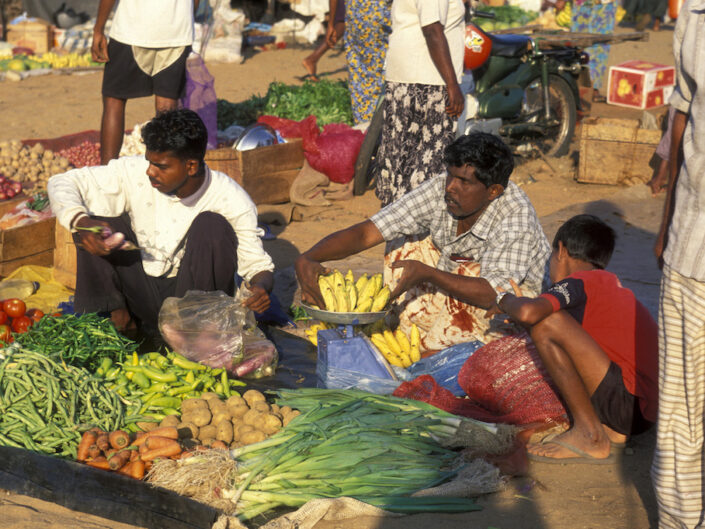 Reisevortrag Sri Lanka 8. Feb. 2020 (Baden)