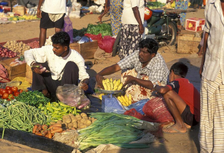 Reise in Sri Lanka in Asien. Auf einem Markt bieten auf dem Boden sitzende Einheimische eine Vielzahl an Gemüse und Früchten an.