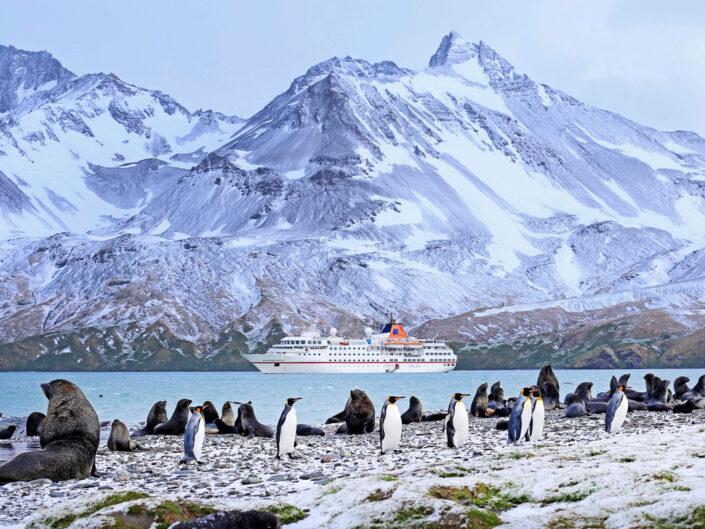 Antarktis mit Hapag Lloyd Kreuzfahrten