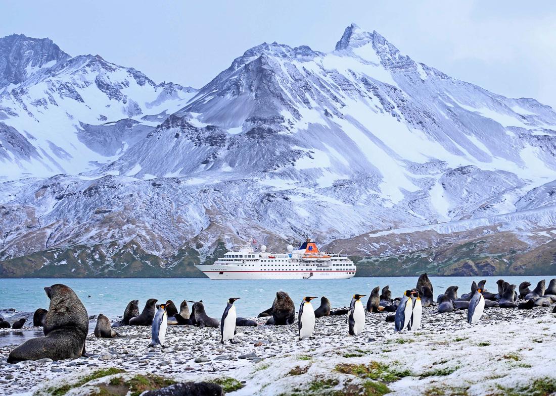 Reise in der Antarktis. An der Küste tummeln sich viele Pinguine, im Hintergrund ist das Expeditions Kreuzfahrtschiff MS Hanseatic von Hapag Lloyd Cruises vor hohen Bergen zu erkennen.