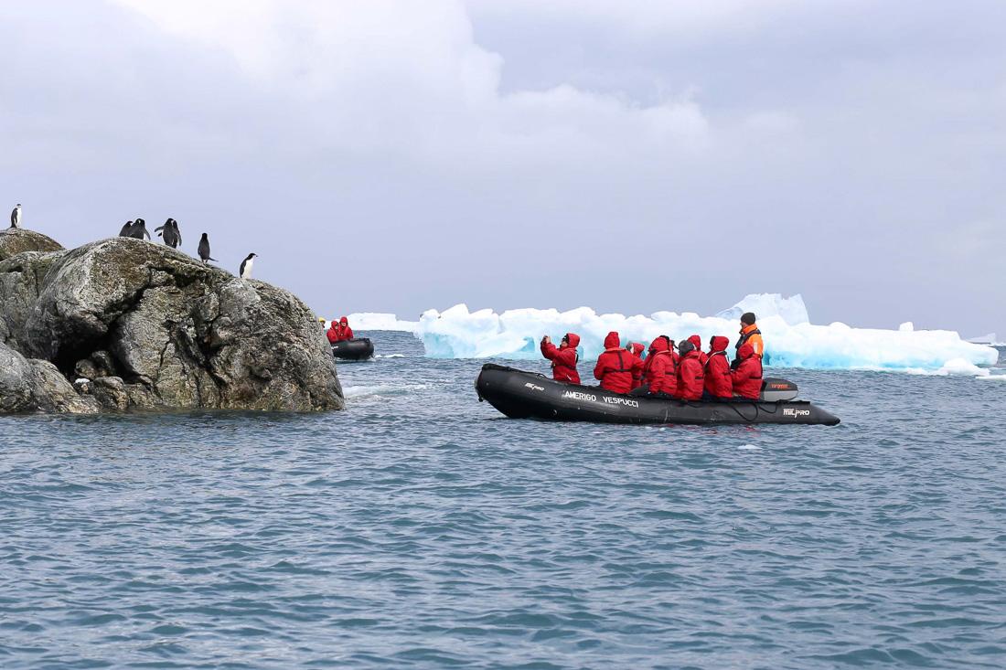 Reise in der Antarktis. Auf einem Schlauchboot des Expeditions Kreuzfahrtschiffes MS Hanseatic von Hapag Lloyd Cruises stehen einige in rote Windjacken eingemummelte Passagiere und beobachten kleine Pinguine auf einem Stein.