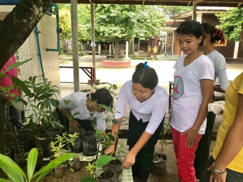 Soziales Projekt in Myanmar. Einige freiwillige Helferinnen pflanzen die jungen Bäume in kleine Töpfe