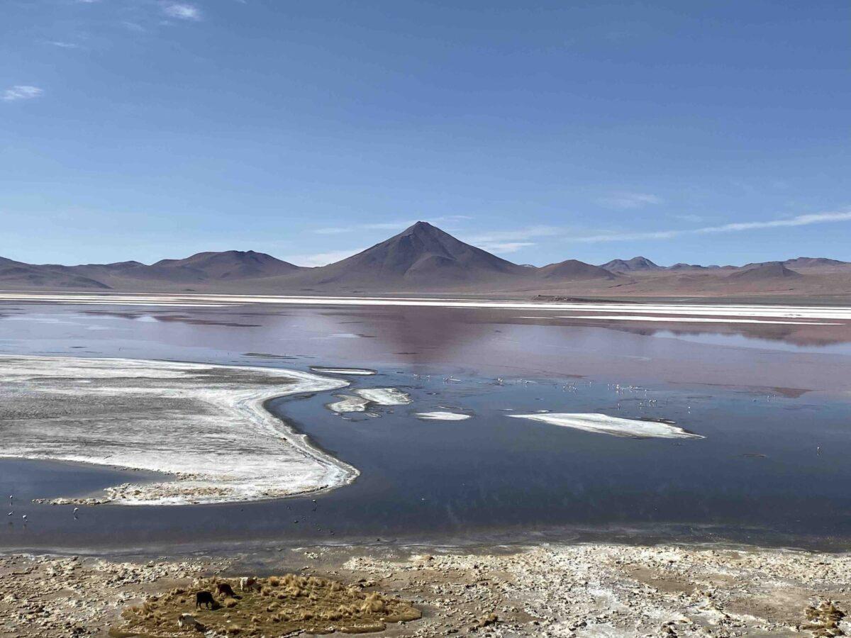 Reise in Bolivien in Südamerika. Die Laguna Colorada prägt das Hochland Altiplano, im Hintergrund ragen die Anden empor.