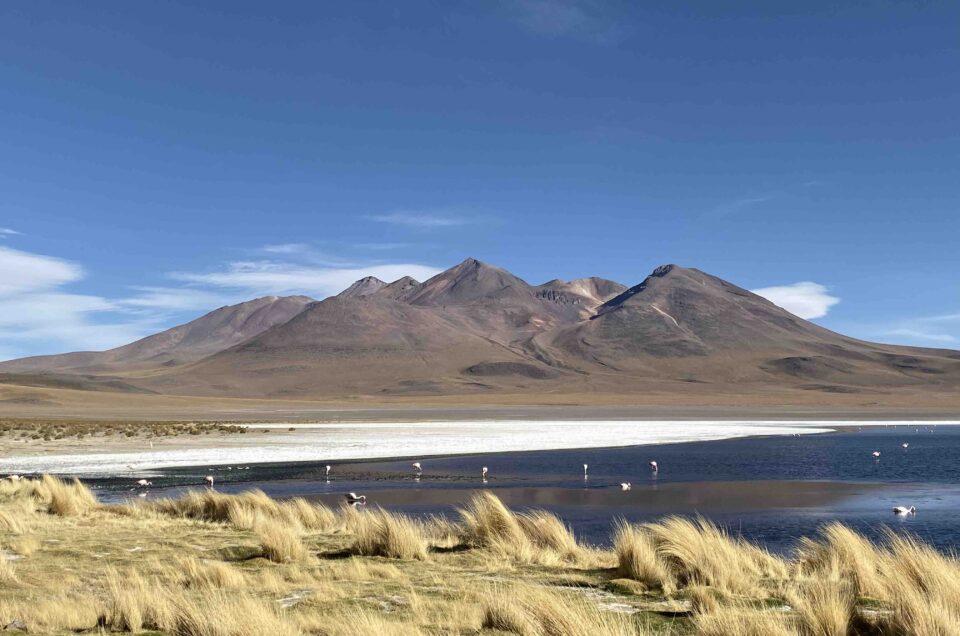 Coronafreies Reiseziel #1 👉 Altiplano in Bolivien