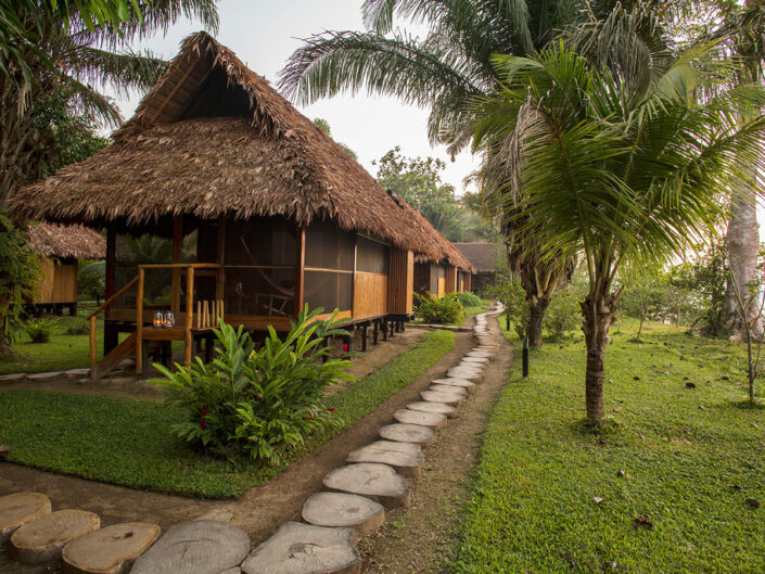 Reise in Peru in Südamerika. Mit Stroh bedeckte Holzhäuser, die Zimmer der Inkatrra Reserva Amazonica Lodge, stehen auf einer Wiese und sind von Palmen umgeben.