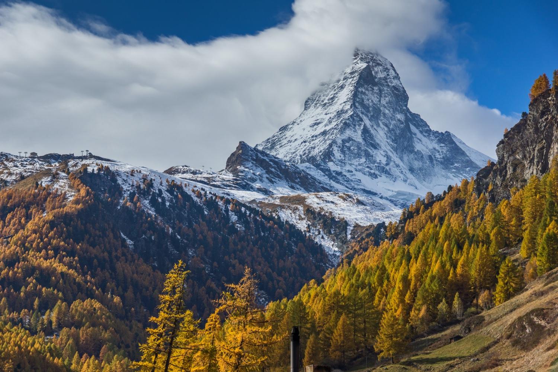 Reise in der Schweiz in Europa. Blick auf das schneebedeckte Matterhorn in Zermatt, davor liegen herbstliche Nadelwälder.