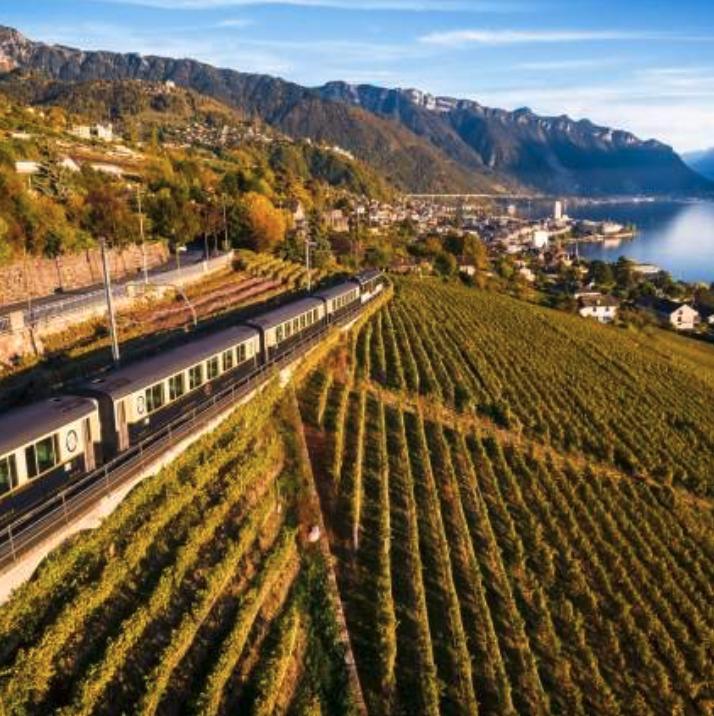 Reise in der Schweiz in Europa. Sicht aus der Luft auf einen Zug, der durch Weinberge entlang einem See fährt.