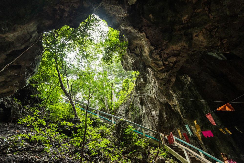 Blick aus einer Höhle in den baumbedeckten Himmel mitten im Dschungel.