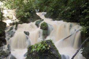 Wasserfall mitten im Urwald in Jamaika