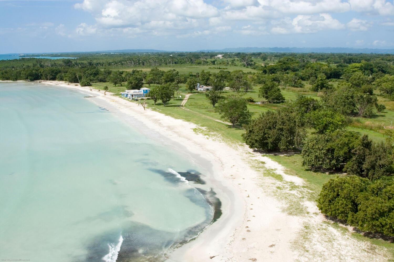 Luftaufnahme von Park mit Bäumen, Strand, Meer und einem blauen Haus