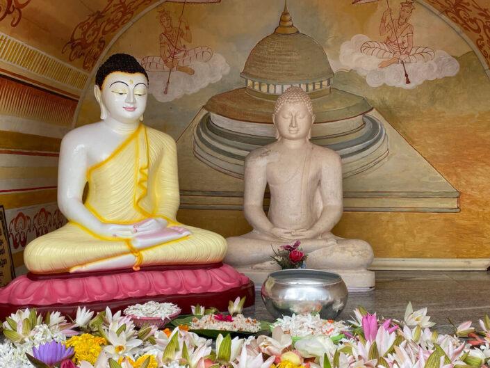 Sri Lanka – Kultur & Ayurveda Kur
