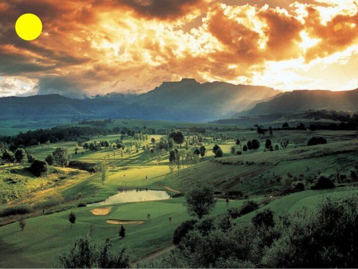 Golf Safari